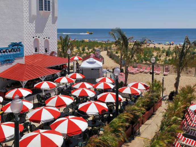 red and white umbrellas at a beach bar